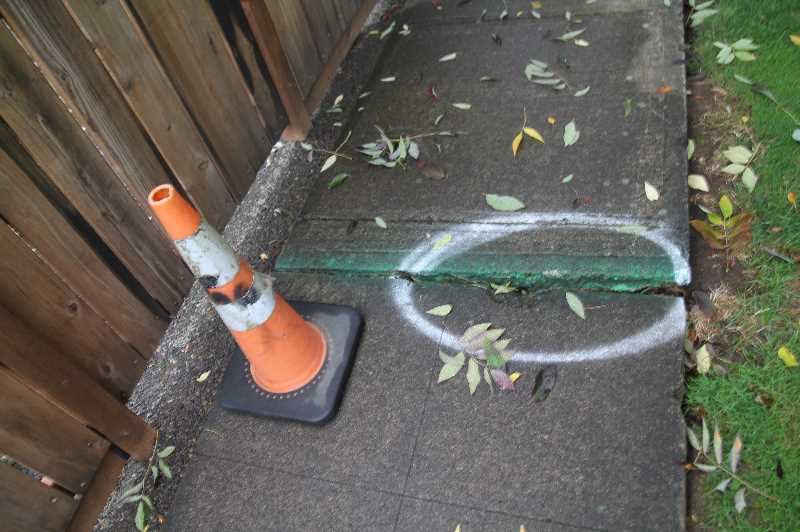PMG PHOTO: JUSTIN MUCH - Woodburn 50/50 sidewalk repair program would afford the city a means of sharing sidewalk repair costs with property owners, who by ordinance are responsible for the repairs.