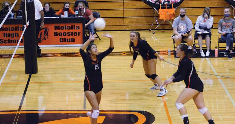 PMG PHOTO: KRISTEN WOHLERS - The Molalla volleyball team now sits atop the league standings after winning the battle of unbeatens against North Marion Sept. 30.