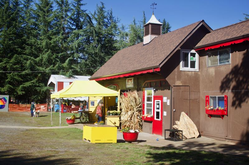 PMG PHOTO: CHRISTOPHER KEIZUR - Fall Festival is open daily through the end of October.