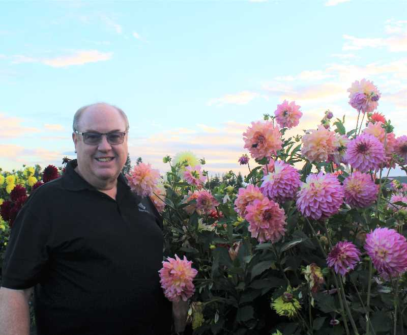 PMG PHOTO: KRISTEN WOHLERS - Mark Oldenkamp shows off some late-season dahlia blooms in his and wife Laura's garden off Central Point Road in Canby.