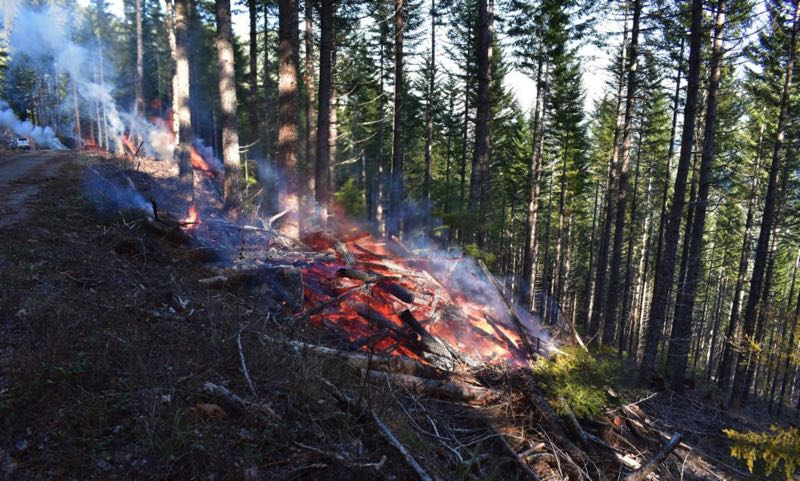 COURTESY PHOTO: MT. HOOD NATIONAL FOREST - Controlled burns will take place on the Mt. Hood National Forest this fall.