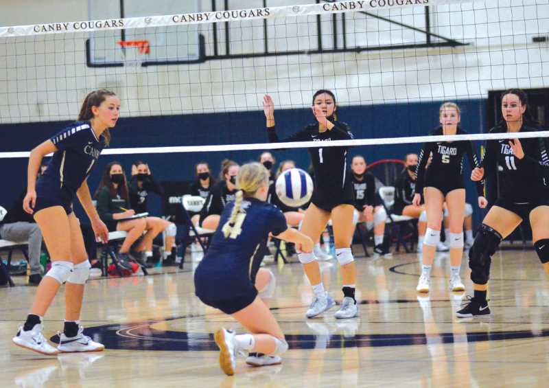 COURTESY PHOTO: SARAH OLIVER - The Canby volleyball team found the going tough last week, falling to both Tigard and Tualatin in league action.