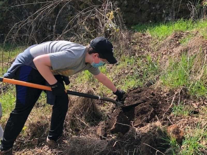 Volunteers needed for Nob Hill Nature Park work party