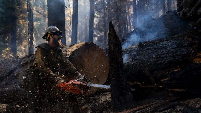 Forest Service seeks applicants for seasonal positions