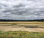 Chicken Creek project to create Tualatin River wetland