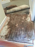 by: JUDE GRAHAM - A rolled-back carpet reveals the extensive damage done to the floor at the Oswego Heritage House from an overflowing toilet. Water still glistens at the bottom of this photo.