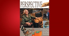 (Image is Clickable Link) by: PMG - Perspectives Magazine 2014