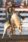 by: PHIL HAWKINS - Hanging on - L.J. Jenkins scored 87 points on his first go riding Rocky of Corey & Lange/Flying Diamond on his way toward a PBR victory July 1 at the St. Paul Rodeo.