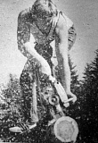 by: ARCHIVE PHOTO - This photo was featured in a 1984 special section insert on the Estacada Timber Festival.