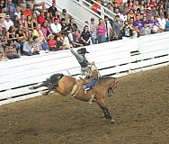 by: JEFF WILSON/THE PIONEER - Tucker Hill of Klamath Falls competes in saddle bronc riding Saturday night at the Jefferson County Fair and Rodeo. The rodeo played to a packed house both nights.