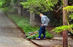 by: COURTESY OF PORTLAND POLICE BUREAU - It appears this car-prowl suspect is stuffing loot into his pedal-pushers, before making a getaway from the Eastmoreland scene of the crime.