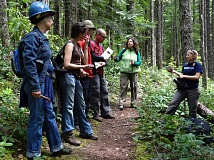 Photo Credit: CONTRIBUTED PHOTO - Wilderness Stewards work on a trail in the Mt. Hood National Forest.