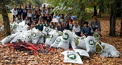 Photo Credit: SUBMITTED PHOTO - About 100 students worked together at the White Oak Savanna. The students, from West Linn High School and Marylhurst University's Pacific International Academy, removed thistle plants from the park.