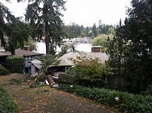 Photo Credit: SUBMITTED PHOTOS - A huge tree crashed down on this garage Saturday on North Shore Road.