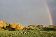 Photo Credit: HILLSBORO TRIBUNE PHOTO: DOUG BURKHARDT - Rows of crops in a Cornelius farmers field lead to the end of the rainbow Friday evening. A black and stormy sky provided a perfect backdrop for the colorful display.