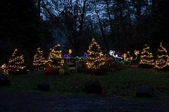 Photo Credit: SUBMITTED PHOTO - The annual lighting of Maddax Woods is set for Saturday, and the celebration will run from 3 to 8 p.m.