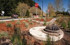 Photo Credit: SPOKESMAN FILE PHOTO: JOSH KULLA - Memorial Park was overhauled earlier this year, with parking added and longstanding stormwater issues addressed. The result is a statewide award for excellence.