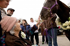 Photo Credit: TIMES PHOTO: JAIME VALDEZ - Jane Cooney escorts her mother, Marjorie Mandelkorn, to see horses brought by Stafford Farms as a birthday surprise for Mandelkorns 100th birthday at Fanno Creek Elite Care.