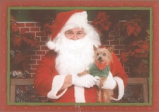 Photo Credit: FILE PHOTO - Send the Independent your holiday greeting, like our own ad representative Susan Vetter did, featuring her Yorkshire terrier, Lil Bit, posing with Santa.