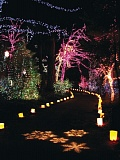 Photo Credit: COURTESY OF THE GROTTO - Holiday displays are lighting up all over the city, including The Grotto.