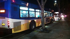 Photo Credit: COURTESY OF OREGON STATE POLICE - A 60-year-old man fell under the wheels of a TriMet bus Wednesday afternoon, Nov. 26, and died on Southeast 82nd Avenue near Causey Avenue.