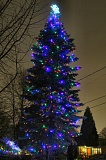 Photo Credit: DAVID F. ASHTON - Look east from the Berkeley Park tennis courts after dark this time of year, and youll see the Schenk familys Christmas tree they share with the Woodstock neighborhood.