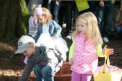 CONTRIBUTED PHOTO - Children search for candy and golden eggs at the Kiwanis Club of Sandy at one of the clubs annual Easter egg hunts in Meinig Memorial Park.