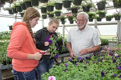 SUSAN MATHENY/MADRAS PIONEER - Culver teacher Dale Crawford shows students Catylynn Duff, left, and Abigail Bates how to prune petunias to get more blooms in the agriculture department's greenhouse.