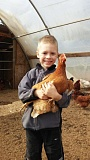 SUBMITTED PHOTO - Titan Caldwell, the son of farmers Judy and Brett Caldwell of Caldwell Family Farms (vendors at the Oregon City Farmers Market) holds one of their chickens. They will have hens for sale at the Householding Fair, along with their produce.