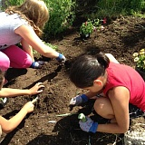 SUBMITTED PHOTO - Kids Club members help plant the fairgrounds' garden.