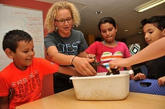 SPOKESMAN PHOTO: VERN UYETAKE - From left, Kevin Gonzalez, Heidi Blair, Venecia Gonzalez and Ibrahim Abouelseoud examine some crawdads at CREST's summer science camp.