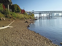 COURTESY HUMAN ACCESS PROJECT - Human Access Project helped clear this spot on the Willamette River south of the Hawthorne Bridge and dubbed it Audrey McCall Beach.