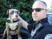 FILE PHOTO - Canine Officer Shaka and Milwaukie Police Officer Billy Wells.