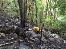 SUBMITTED PHOTO - Firefighters spent much of Friday morning mopping up the remains of a brush fire that spread up a hillside adjacent to Waluga Park East.