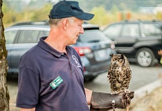 NEWS-TIMES PHOTOS: CHASE ALLGOOD - Audubon Society volunteer Steve Delatch shows off Julio, an elderly Great Horned Owl.