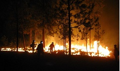 COURTESY OF RANDY GREEN - Firefighters set back fires last week in the County Line 2 fire in Central Oregon. The state still has some funding to fight wildfires, with insurance to back it up.