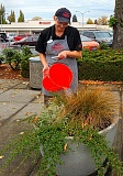 ELIZABETH USSHER GROFF - Lori Donovan, Woodstock Papa Murphys Manager, is one of several businesspeople who have stepped forward to water Woodstock Boulevard flower pots as a tribute to Tim, as well as continuing his personal mission of keeping Woodstocks business district beautiful.