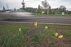 SPOKESMAN FILE PHOTO - Finding a perfect balance between keeping its semi-rural feel and bowing to inevitable development has been a tough call for the Frog Pond area east of Wilsonville this year.