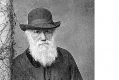 SUBMITTED PHOTO - `Mr. Darwin's Tree' strives to portray Charles Darwin as a real person and examine his journey toward the famous scientific discoveries, rather than taking a stance on them.
