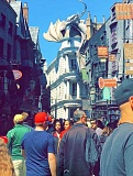 SUBMITTED PHOTO: ANNA SPEER - Anna Speer snaps a shot of Harry Potter World in Florida, where she went on spring break.