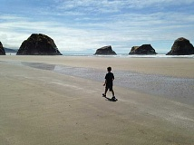 SUBMITTED PHOTO  - Take the whole family on a hike at Ecola State Park on Mothers Day. Transportation is provided for this special event.