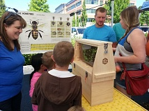 PHOTO COURTESY: JACKIE HAMMOND-WILLIAMS - Visitors to the Oregon City Farmers Market last year check out the see-through hive at the Bee Aware Pollinator Fair.