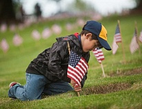 OUTLOOK PHOTO: JOSH KULLA - Lucas Stuchlik of Gresham Cub Scout Pack 740 plants a flag Thursday at a gravesite at Willamette National Cemetery as part of the Cascade Pacific Councils 48th annual flag planting event.