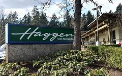 REVIEW PHOTO: VERN UYETAKE - The Haggen Food & Pharmacy store on Boones Ferry Road in Lake Oswego will close June 1 for a week-long conversion and reopen as an Albertsons on June 9.
