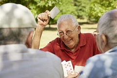 SUBMITTED PHOTO: 123RF - Learn to play pinochle or other games at the LOACC.