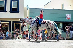 ESTACADA NEWS FILE PHOTO - Estacada's annual Fourth of July parade always includes a variety of participants, including horses.