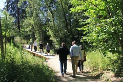 PHOTO COURTESY METRO - With the help of a $125,000 Metro Nature in Neighborhoods grant, the North Clackamas Parks & Recreation District rerouted a trail out of a wetland, installed a boardwalk and an overlook, restored native plants and added large, woody debris to enhance fish habitat.