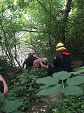 COURTESY OF TVF&R - TVF&R crews escort a woman up a 20-foot-tall embankment after she and her 87-year-old male companion fell Saturday afternoon.
