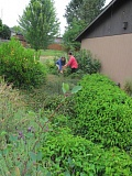 PHOTO BY ELLEN SPITALERI - Jean Herrera and Lori Prouty tend to the weeds in the rain garden behind the fellowship hall and education wing of the Clackamas United Church of Christ. The swale, which filters rain water into the garden, snakes through the site just in front of the two women.