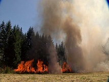 MFD - Wildfire training exercise at Molalla